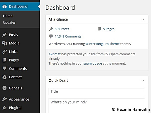 Dashboard Hazmin Hamudin WordPress 2